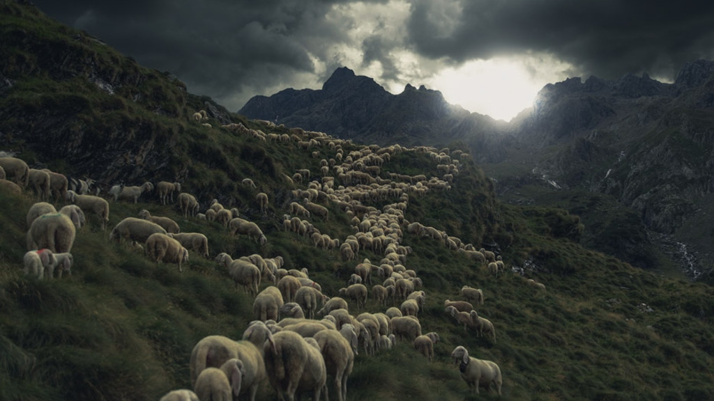 Project image for Moments in Time: nomadic shepherd across Italy