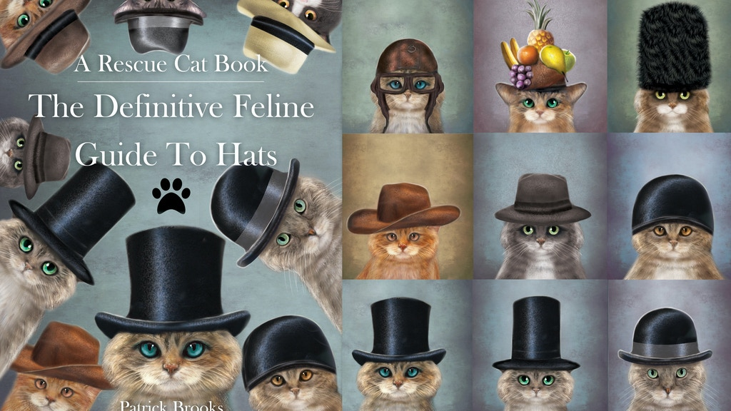 The Definitive Feline Guide To Hats