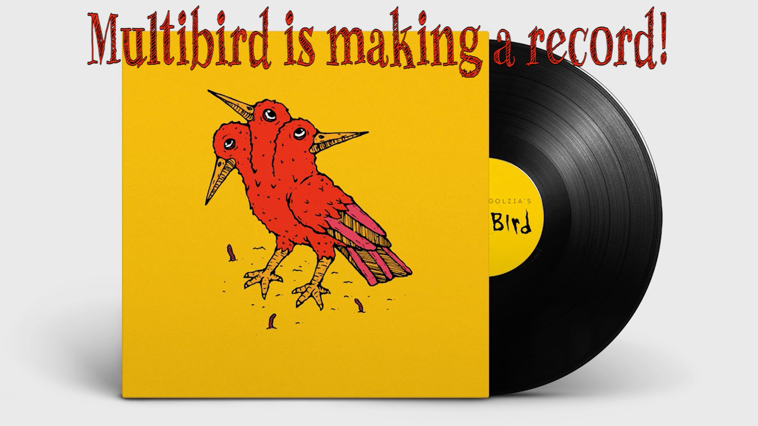 Multibird is releasing their first official album!