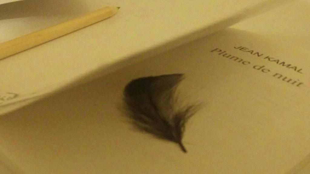 Plumes De Nuit Mon Livre By Cupofme Kickstarter