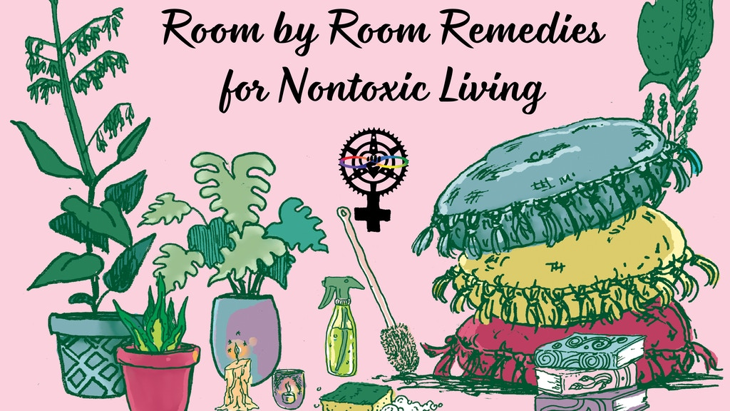 Detox Your Place: Room-by-Room Remedies for Nontoxic Living project video thumbnail