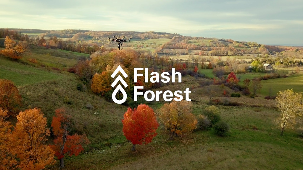 Flash Forest: Using Drones to Plant 1 Billion Trees