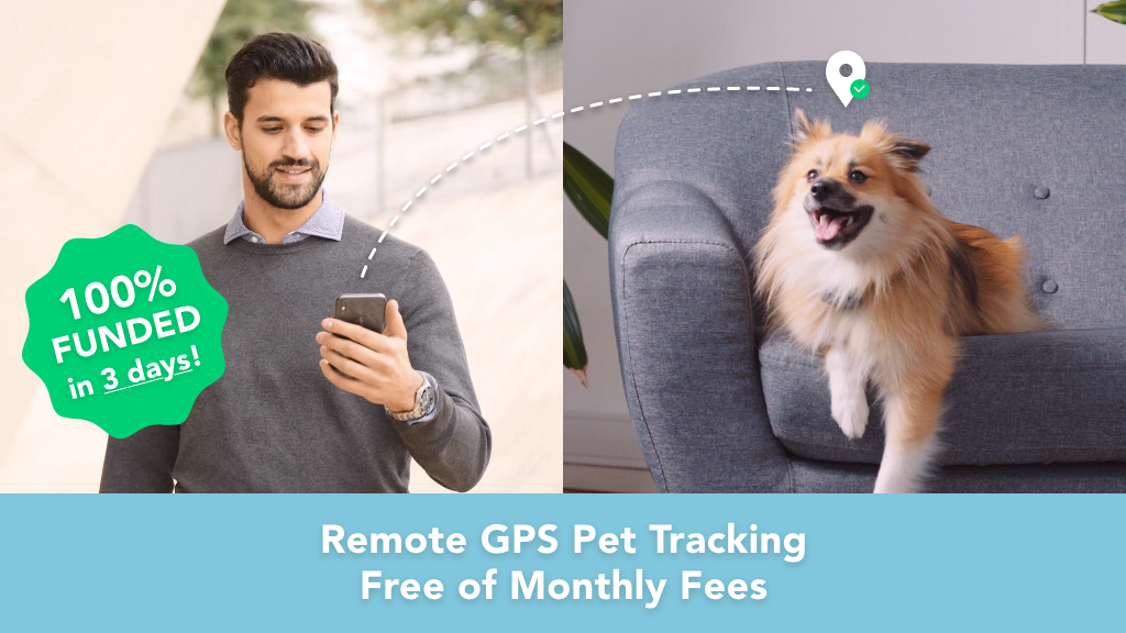 Findster Home: Track Your Pets' Location 24/7 From Anywhere! project video thumbnail