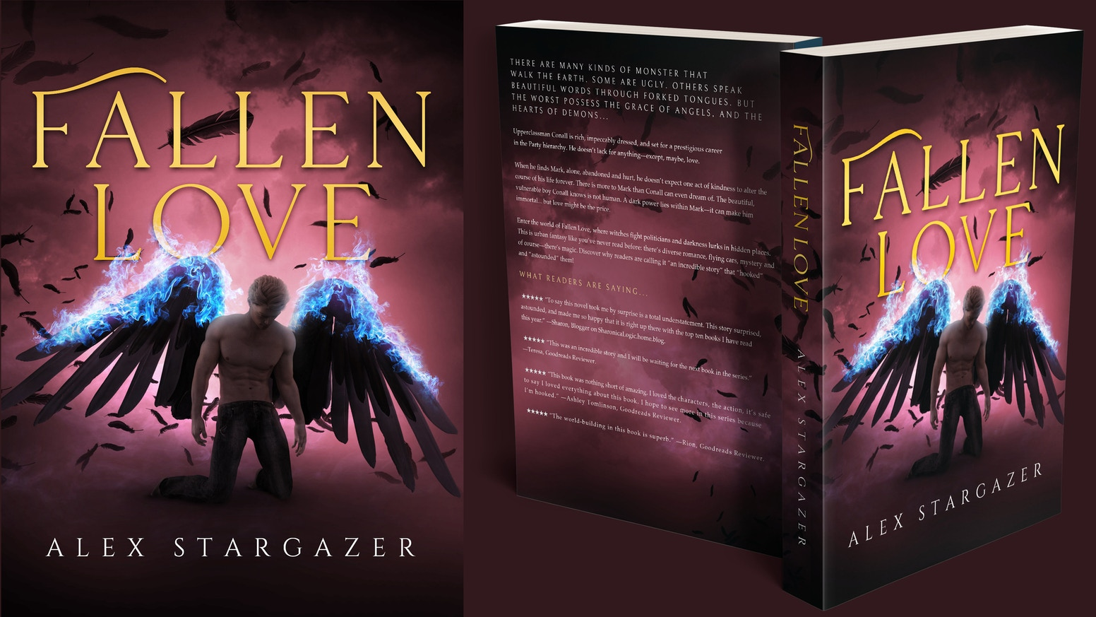 Thank you everyone! Fallen Love is now on sale.