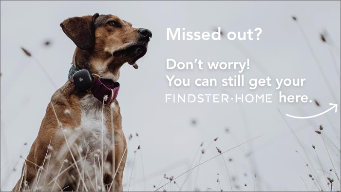 Findster Home tracks your pets' GPS location and activity 24/7, letting you monitor them whether you're home or away. No monthly fees!