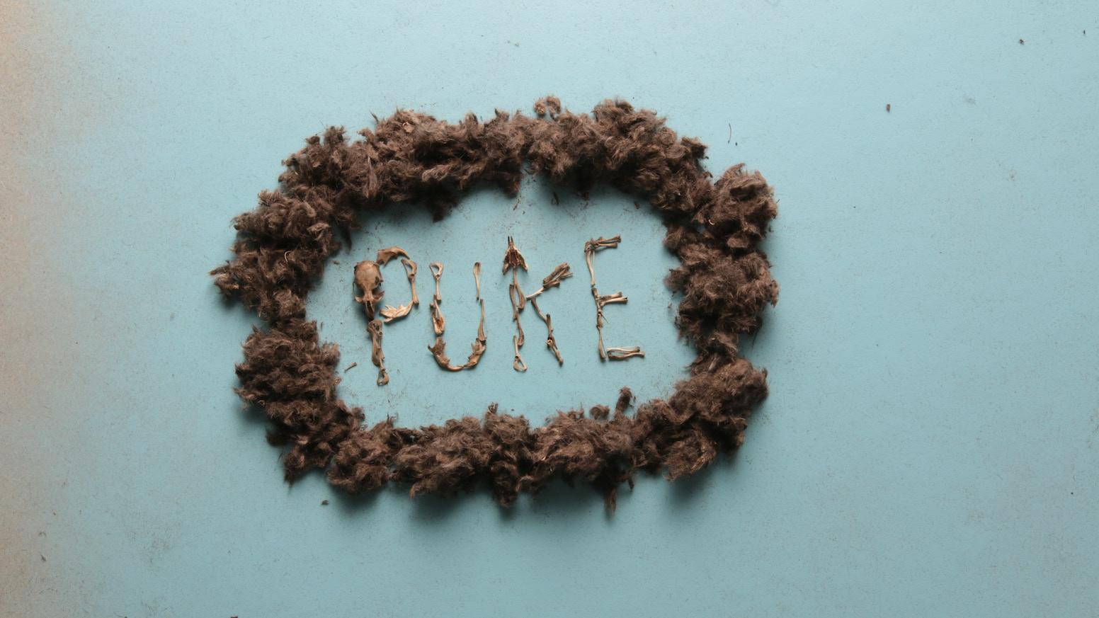 PUKE by Foster Huntington — Kickstarter