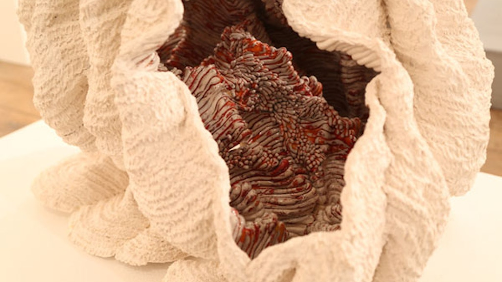 Expressing the beauty & survival of Coral through sculpture