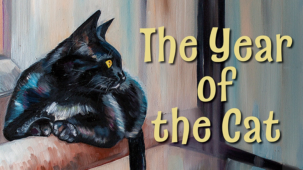 The Year of the Cat: Make 100 Cat Stories project video thumbnail