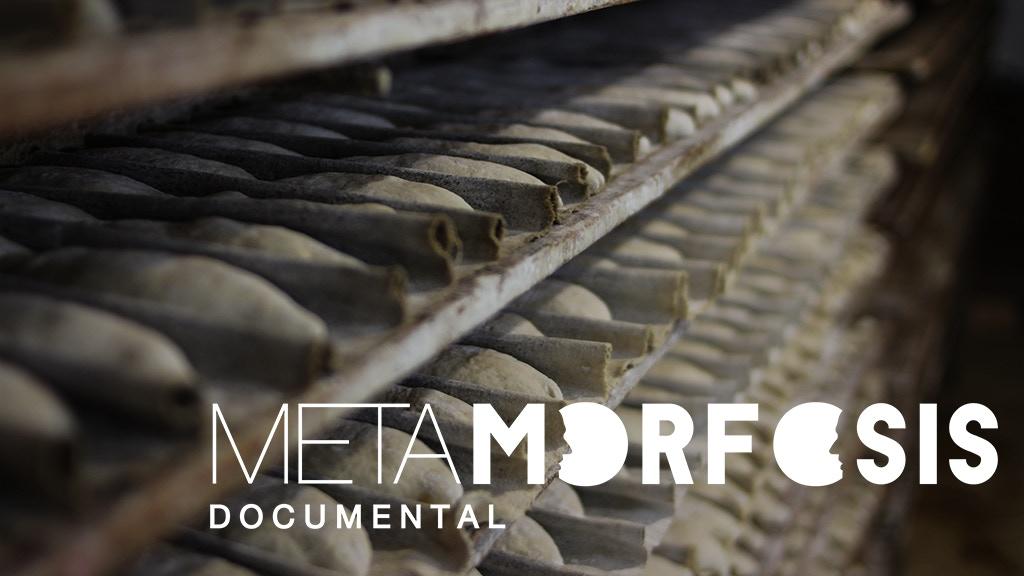 Metamorfosis Documental project video thumbnail