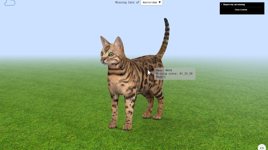 Project image for missingcats.online : The online platform for your lost cat