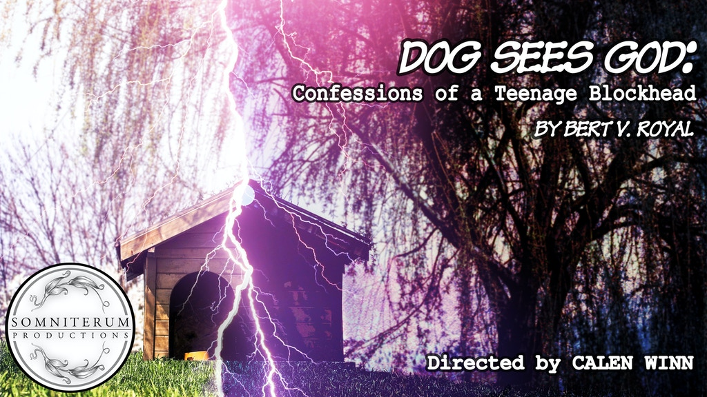 """Project image for """"Dog Sees God: Confessions of a Teenage Blockhead"""""""