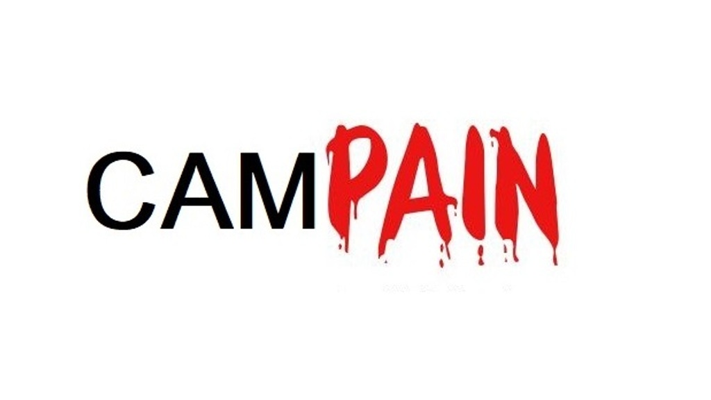 Project image for CamPAIN: for when everything falls apart except the board (Canceled)
