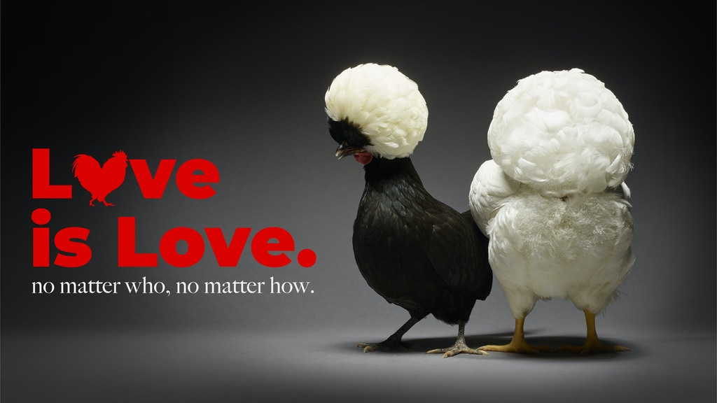 Chicken in Love. project video thumbnail