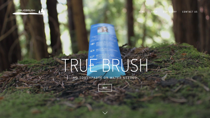 Natural oral care solution. No toothpaste or water needed. Used for centuries to support oral hygiene. Presented to you as TrueBrush.