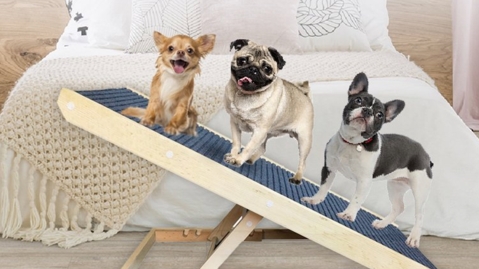 Pet Ramp for Small, Old or Lazy Pets!