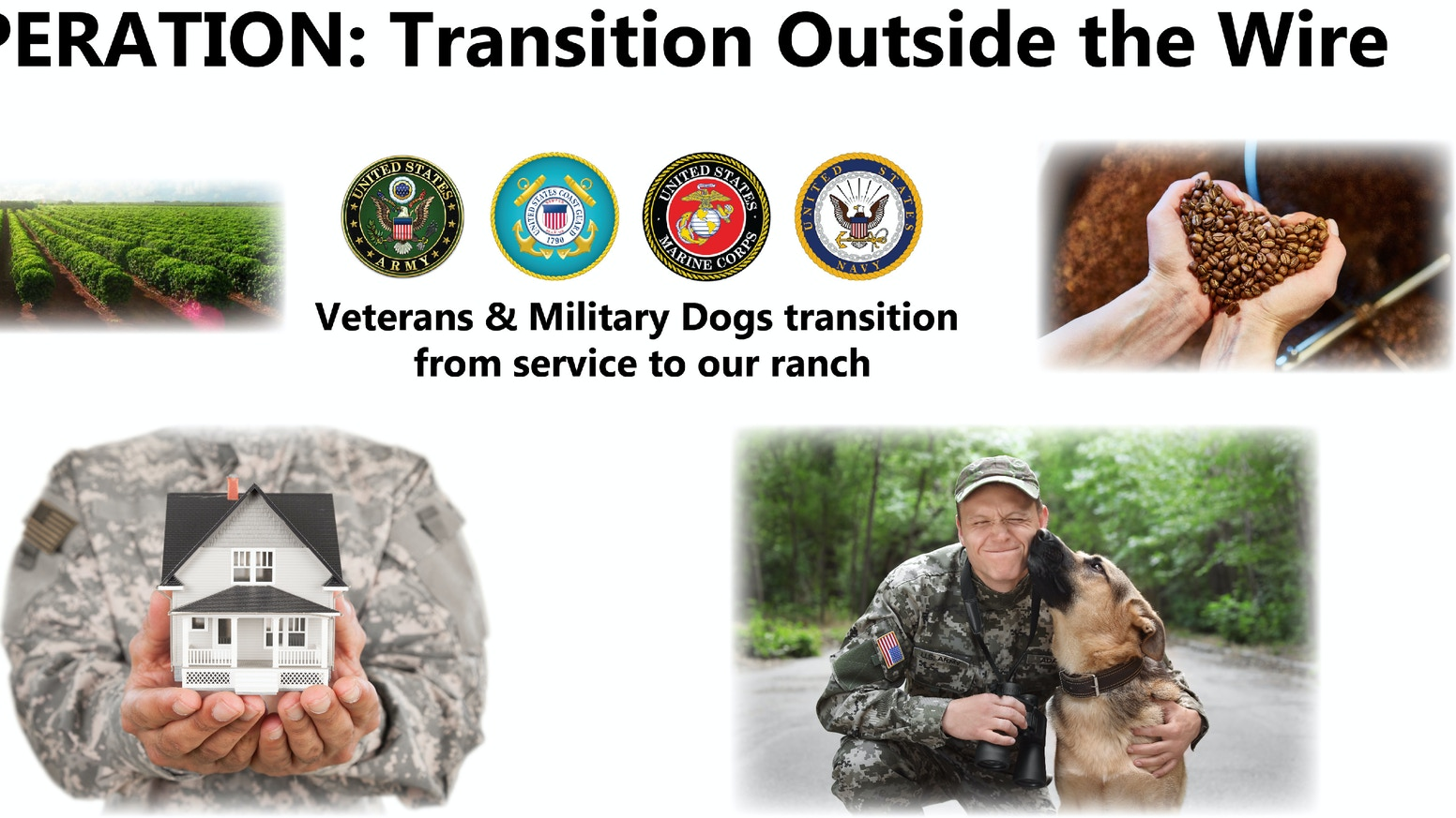 Operation: Transition Outside the Wire