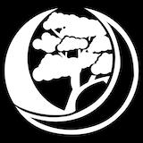 Lunar Oak Studio