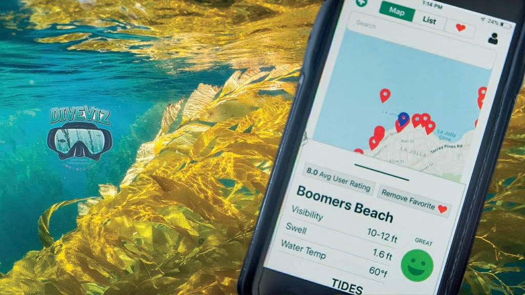 DiveViz: App for Underwater Visibility and Dive Conditions