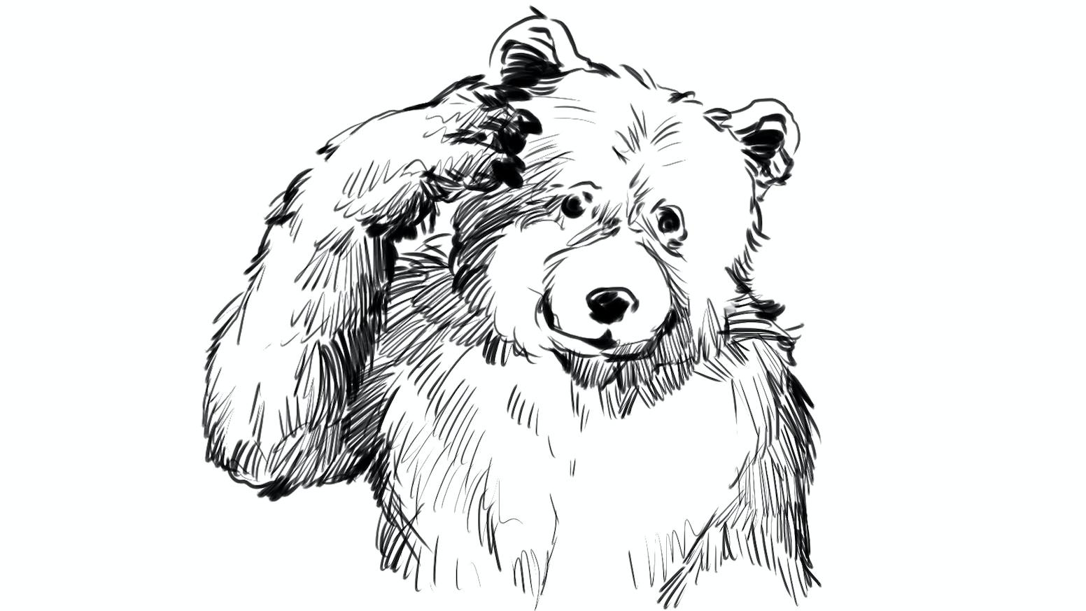 War Bear by Wojciech — Kickstarter