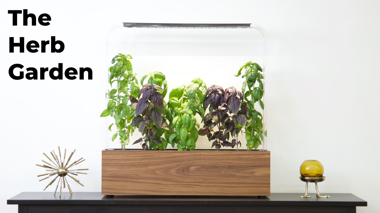 A truly intelligent, beautiful, professional-grade, indoor garden for growing fresh herbs and vegetables all year long