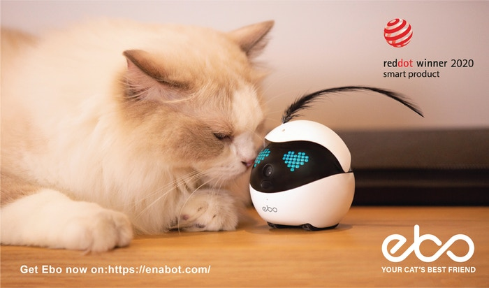 Love, Care, and Always Be There with Ebo, the Next Generation Cat Companion. Get it now on:https://enabot.com/