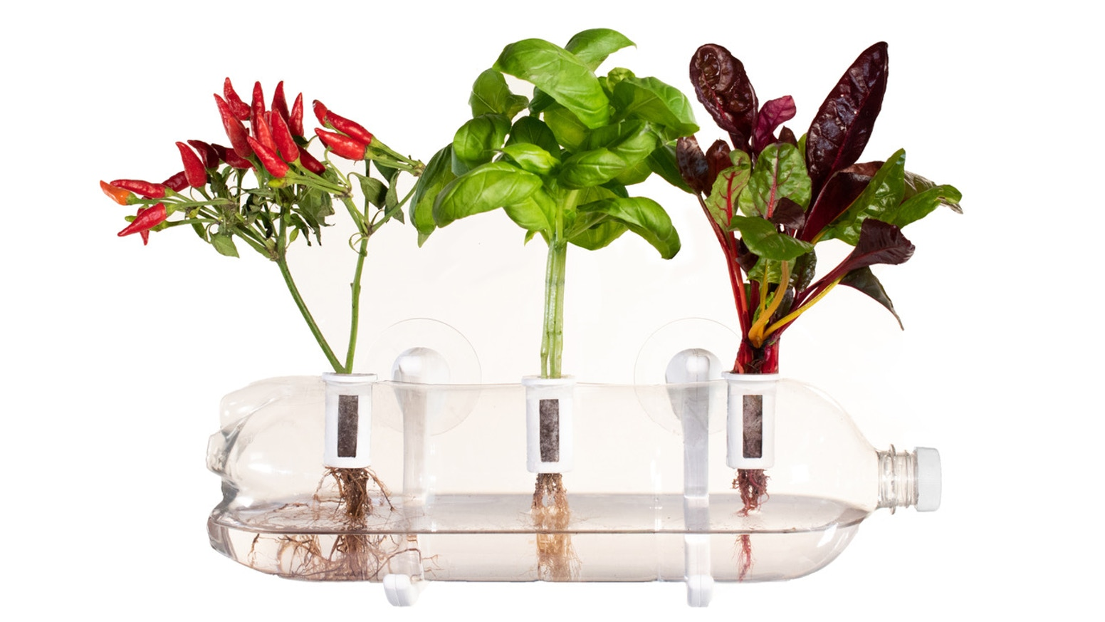 The kit that turns any used plastic bottle into a beautiful indoor farm