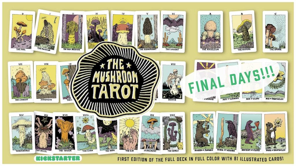 The Mushroom Tarot: Full Color, Full Deck project video thumbnail