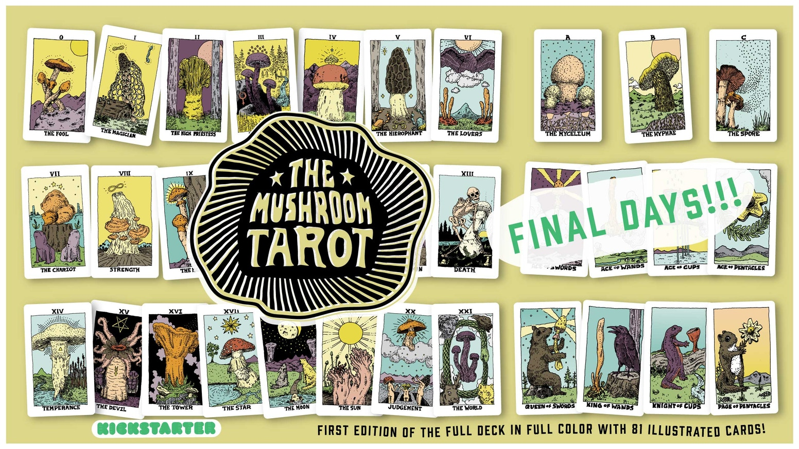 The Mushroom Tarot will include the 78 Cards of the Major & Minor Arcana & 3 Mushroom Guide cards in Full Color!
