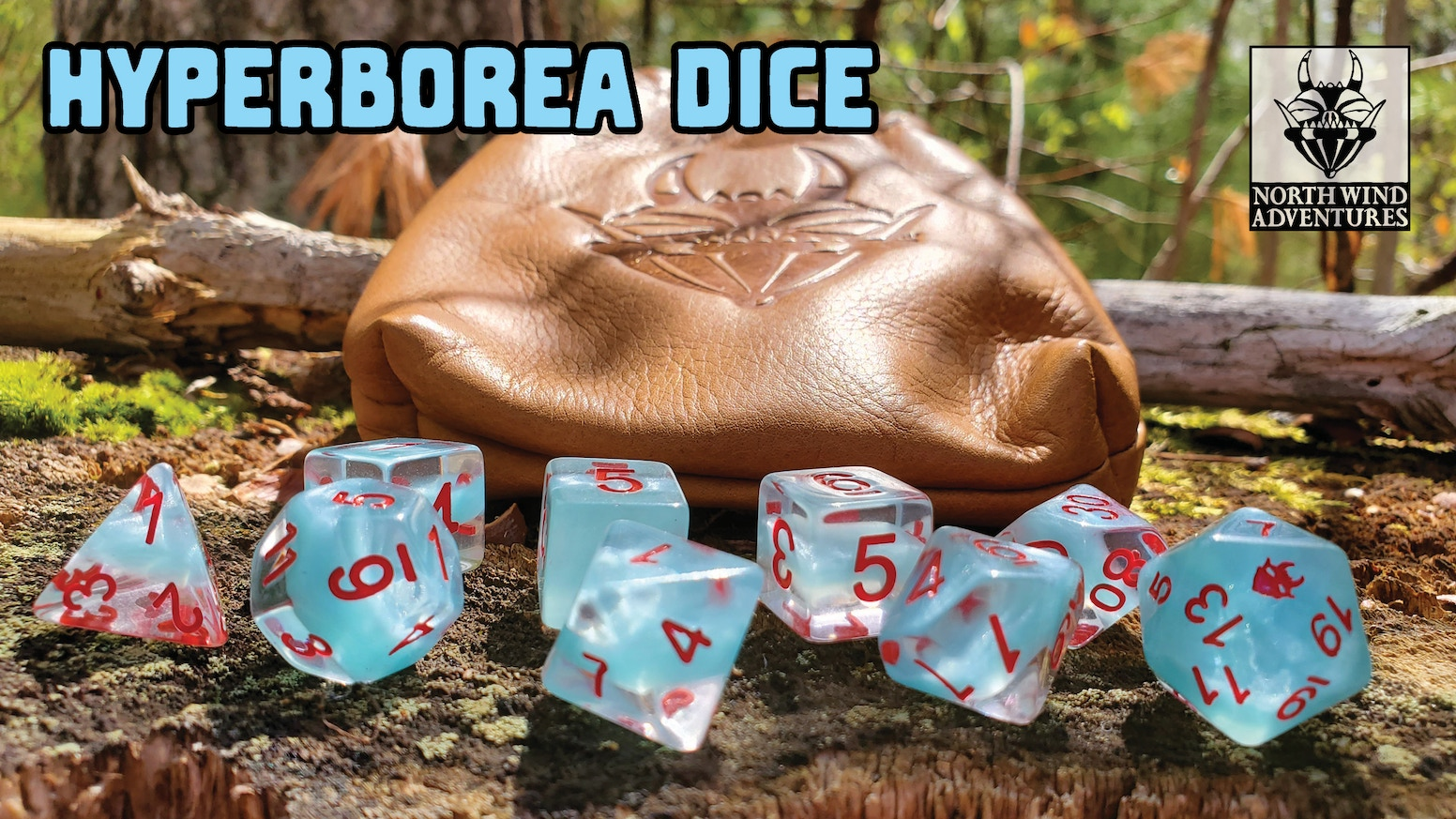 tabletop RPG dice and leather pouch