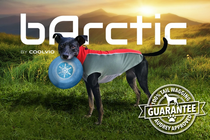 New patented fabric technology produces red and near-infrared light for the coolest shirt your dog will ever own. Plus no water needed!