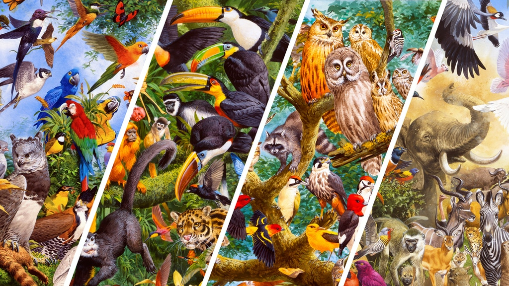 The Wildlife Collection - 4 Puzzles form 1 Artwork Project-Video-Thumbnail