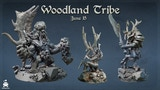 Woodland Tribe thumbnail