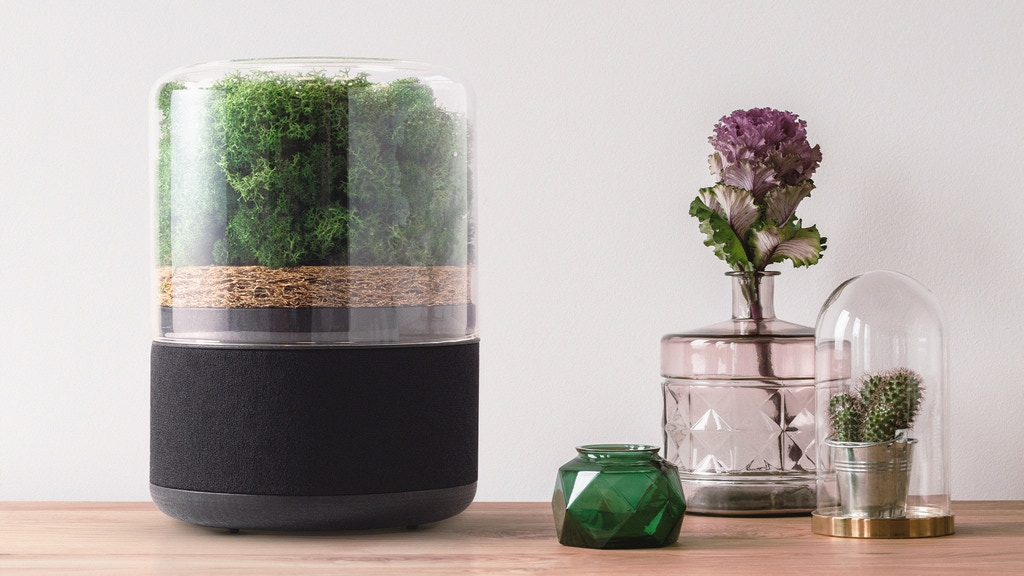 Unlock The Power Of Plants With The Briiv Air Filter by Briiv — Kickstarter