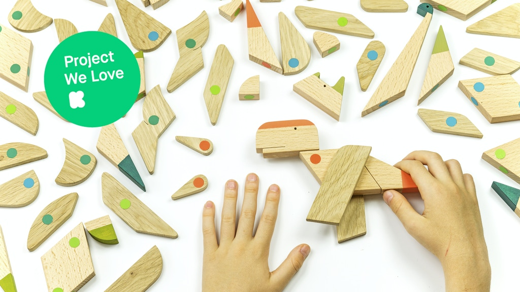 ESNAF toys - wooden magnetic toys for kids and adults project video thumbnail
