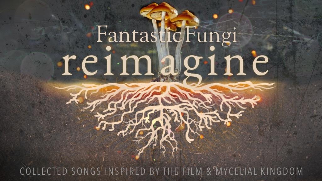 Project image for Fantastic Fungi: Reimagine