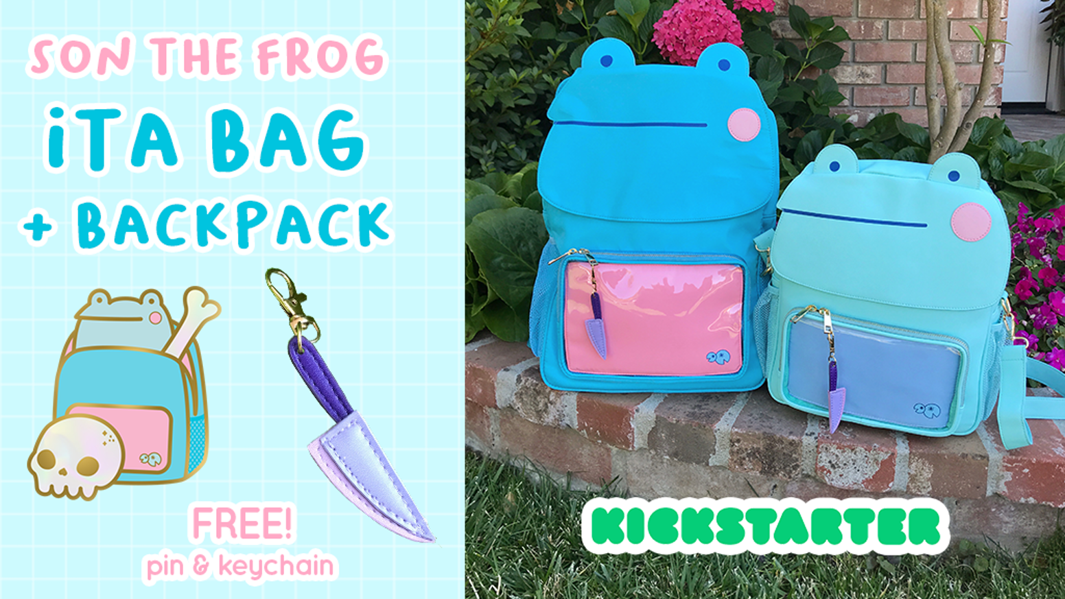 A Son the Frog ita bag purse and backpack!