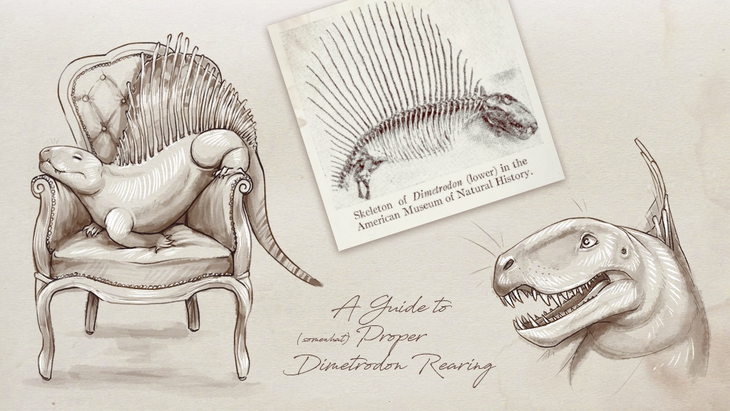 An artbook in the form of a journal, telling the story of time-travelling palaeobotanist Eleonora Brooks and her dimetrodon Dimitry.