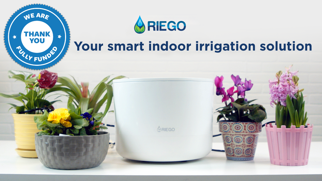 Riego: Automatically water your houseplants project video thumbnail