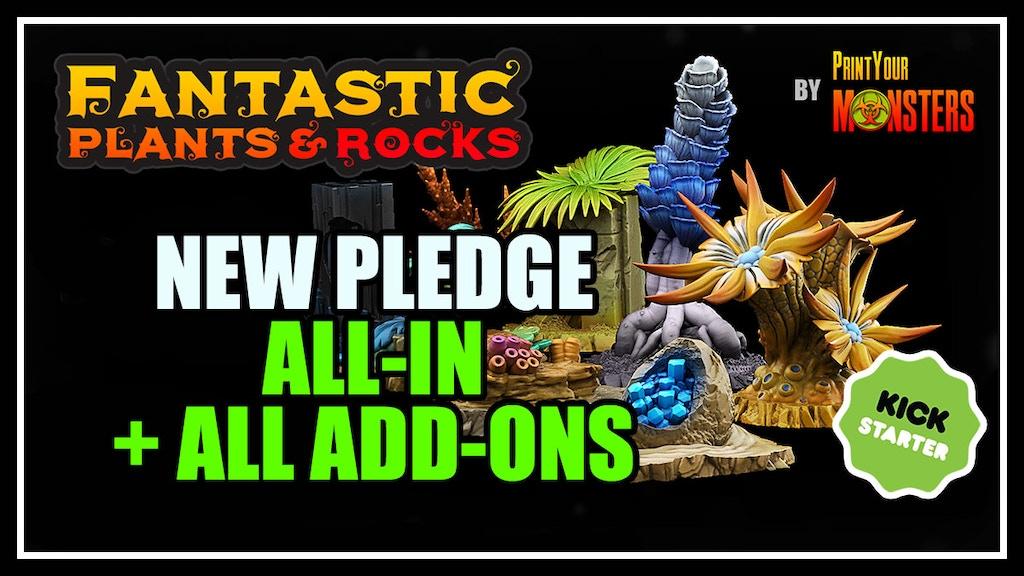FANTASTIC PLANTS & ROCKS project video thumbnail