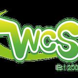 World Cosplay Summit/世界コスプレサミット