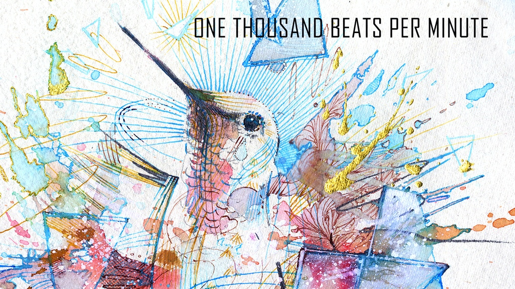 1000bpm, hummingbird fine art print, Ltd edition of 100 project video thumbnail