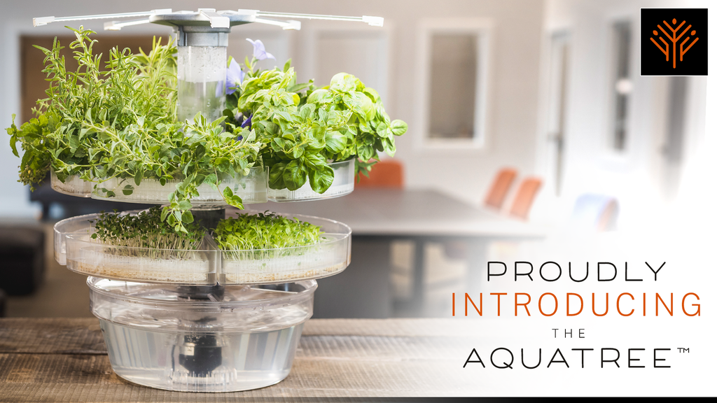 AquaTree: Grow Your Own Food in the Comfort of Your Home project video thumbnail