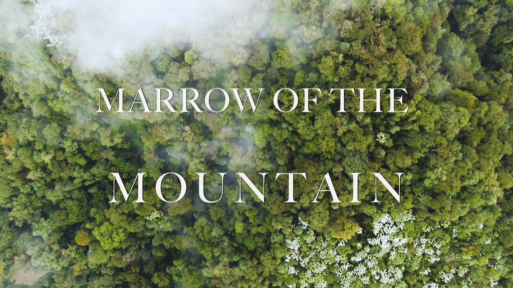 Marrow of the Mountain: the COVID Emergency Fundraiser project video thumbnail