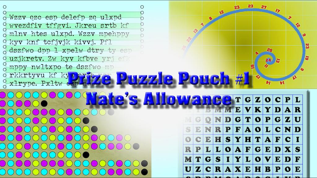 Prize Puzzle Pouch