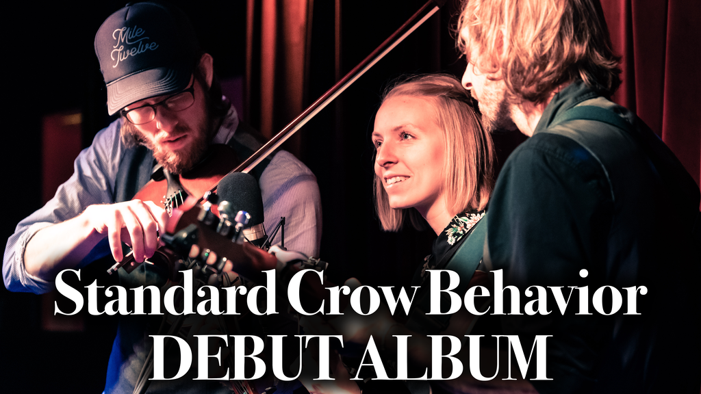 Standard Crow Behavior: Debut Album project video thumbnail