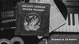 Ancient Undead Spider Wizard thumbnail