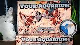 """Your Aquarium"" Card-based Board Game thumbnail"