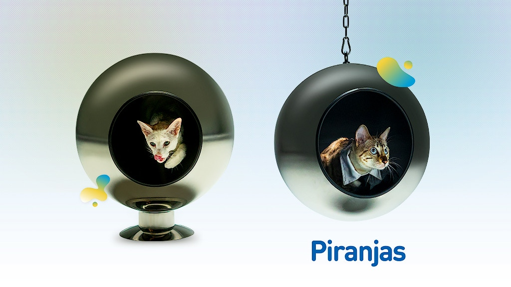 Piranjas Pluto – The comfiest cat bed in the universe.