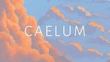 Caelum: A Shattered Sky thumbnail