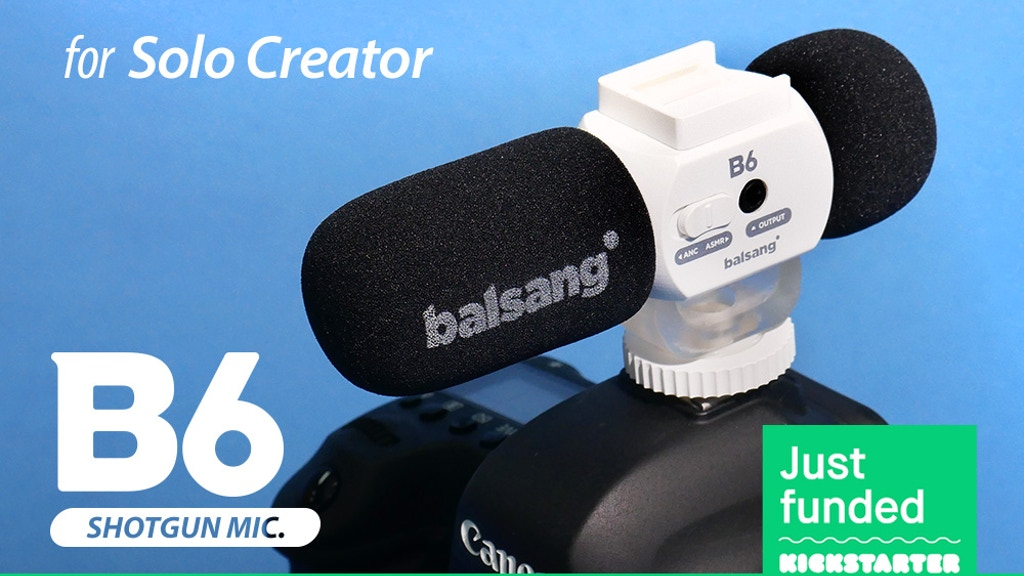 B6 Multi-directional Shotgun microphone for content creator
